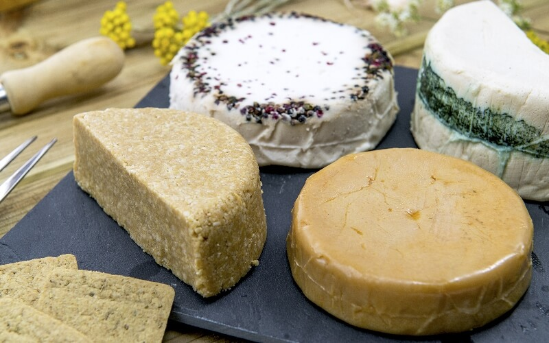 Vegan cheeses made with plant-based alternatives