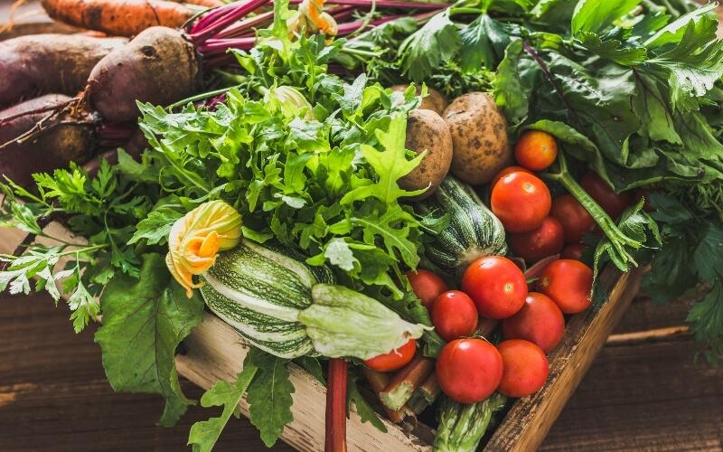 Vegans eat loads of vegetables